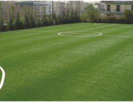 Aghioi Anargyroi Municipality, Athens: Mini soccer field (Ergograss)